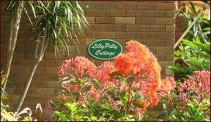 Lillypilly - Hervey Bay Accommodation