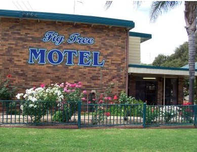 Fig Tree Motel - Hervey Bay Accommodation