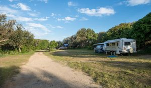 Racecourse Campground - Hervey Bay Accommodation