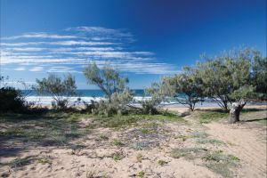 Deepwater National Park camping - Hervey Bay Accommodation