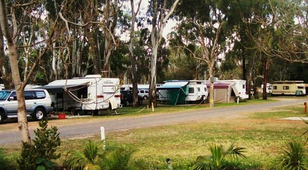 Buronga Riverside Tourist Park - Hervey Bay Accommodation