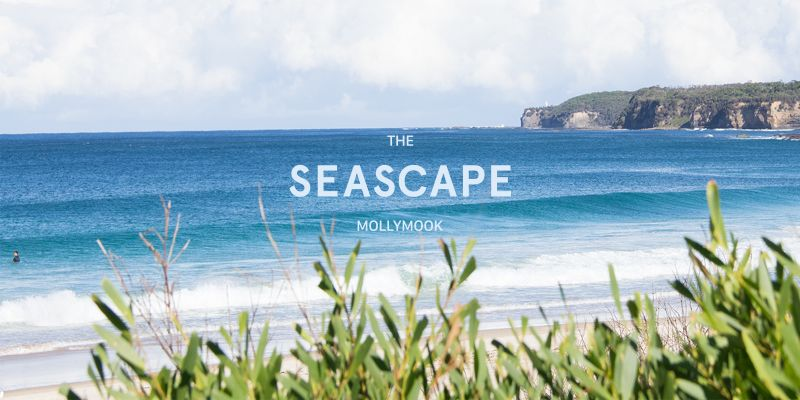 Mollymook Seascape Motel  Apartments - Hervey Bay Accommodation