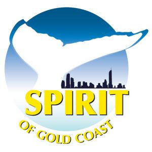 Spirit of Gold Coast Whale Watching - Hervey Bay Accommodation