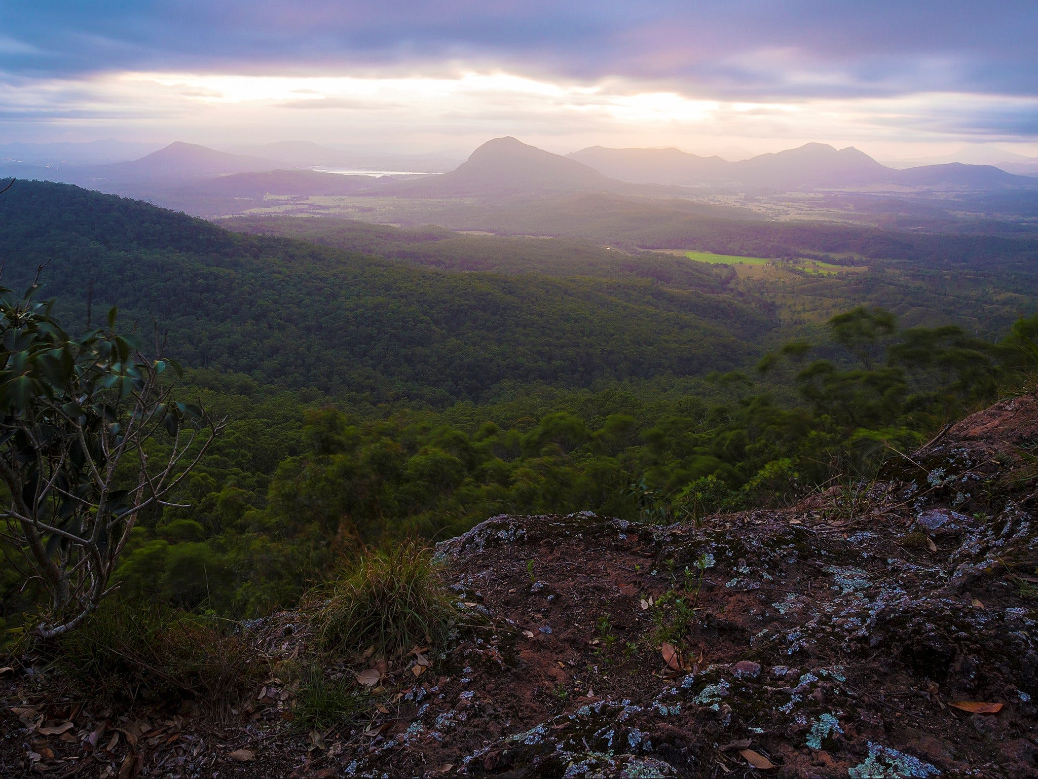 Cunninghams Gap and Spicers Gap Main Range National Park - Hervey Bay Accommodation
